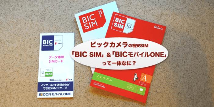 ビックカメラの格安SIM「BIC SIM」「BIC モバイル ONE SIM」とは?